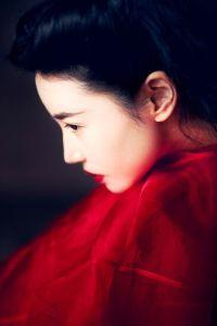 Valentino photo art Zhang Xin Yuan wearing Valentino by Wang Feng