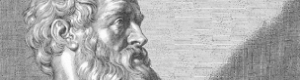 Apivita hippocrates