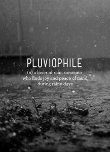 Pluie Pluviophile