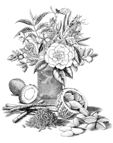 Buly Fleurs et fruits